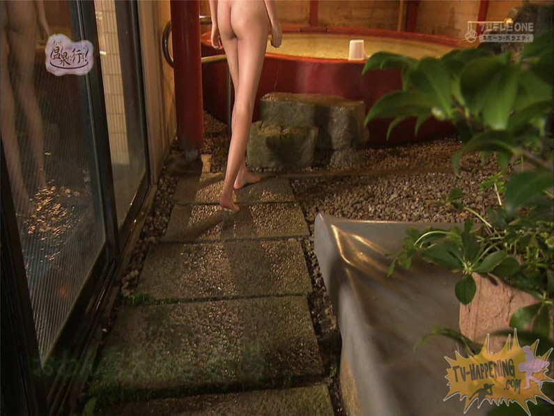 【お宝エロ画像】美女の脱衣シーンから、お尻丸出しでテレビに出ちゃう有能番組もっと温泉に行こう! 35