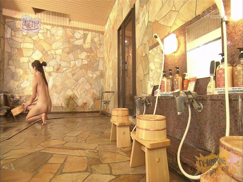【お宝エロ画像】美女の脱衣シーンから、お尻丸出しでテレビに出ちゃう有能番組もっと温泉に行こう! 59